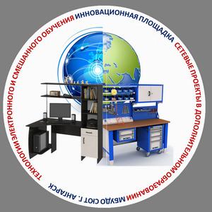Технология электронного и смешанного обучения. Сетевые проекты в дополнительном образовании